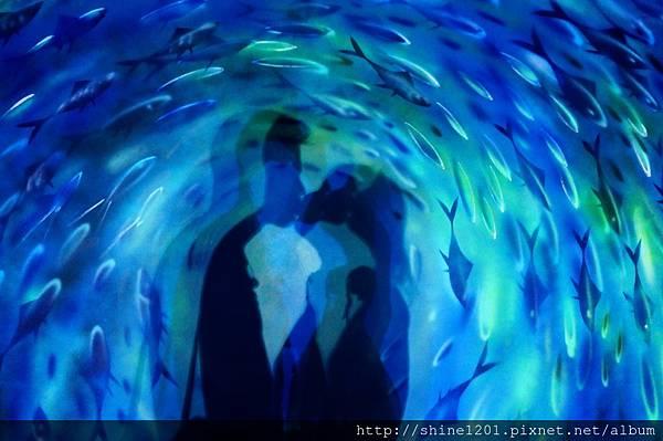 【宜蘭蘇澳景點】一米特創藝美食館 / 祝大魚物產文創館,宜蘭親子景點.雨天行程