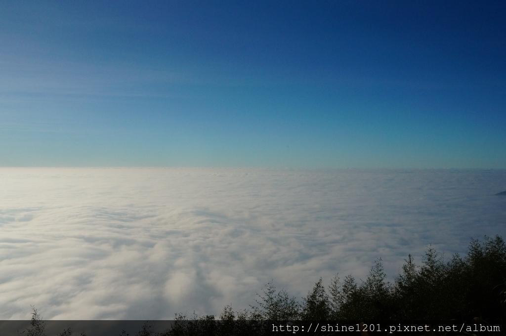 阿里山景點.阿里山民宿.阿里山美食.阿里山雲海.掌聲響起.璟隆慢活仙境