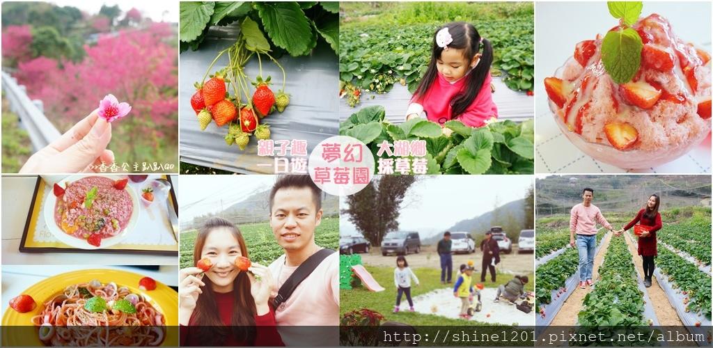 苗栗大湖採草莓親子一日遊 夢幻草莓園 花間集 苗栗大湖美食