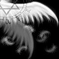 翅膀.jpg