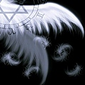 翅膀2.jpg