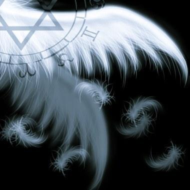 翅膀3.jpg