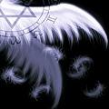 翅膀4.jpg