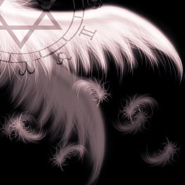 翅膀5.jpg