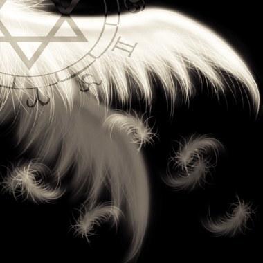 翅膀7.jpg