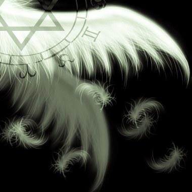 翅膀8.jpg