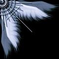 翅膀9.jpg