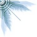 翅膀11.jpg