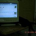 20060331of1.JPG