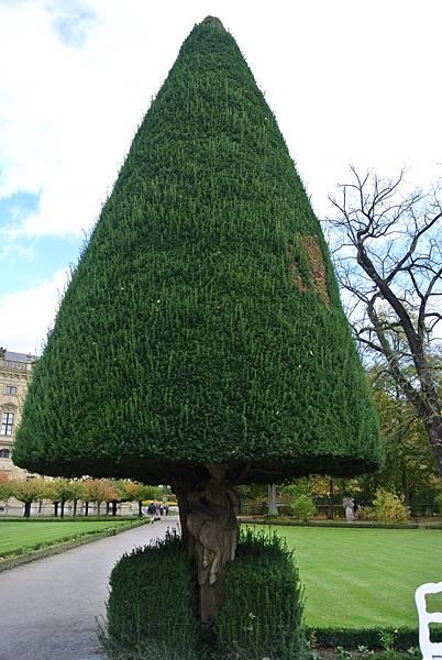 樹木下的雕像.JPG