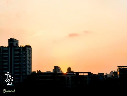 夕陽美景 和我們一樣 要相遇都需要緣分的