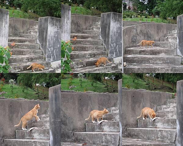 2012馬來西亞.jpg