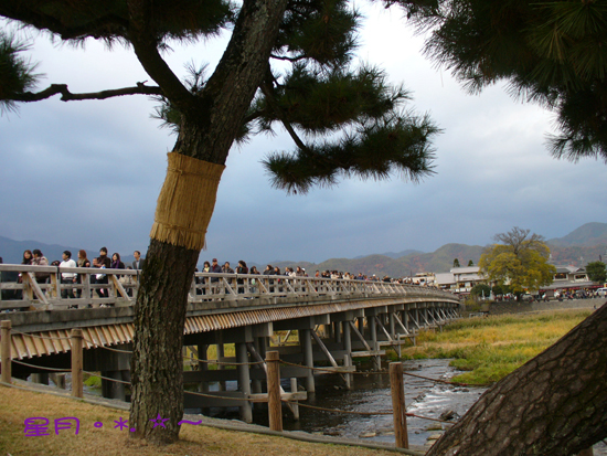 那年尋花的時日..「渡月橋」嵐山