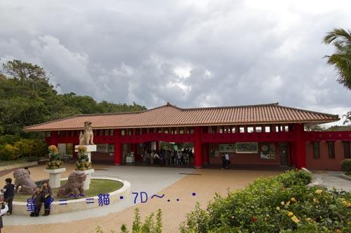 2014貓・7D【玉泉洞王國村】沖繩