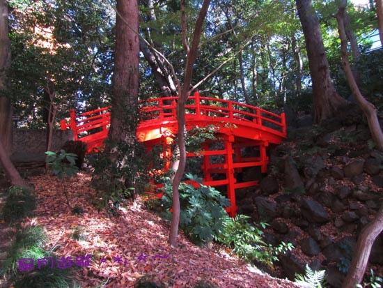 2013東京秋「小石川後楽園」