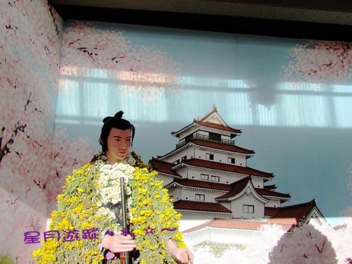 湯島天神菊2013東京秋