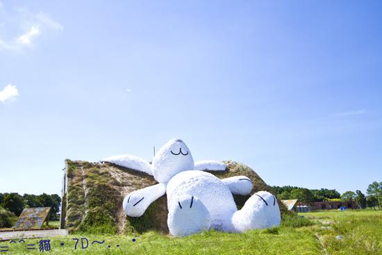 「月兔」霍夫曼・桃園地景藝術節=^^=貓・7D