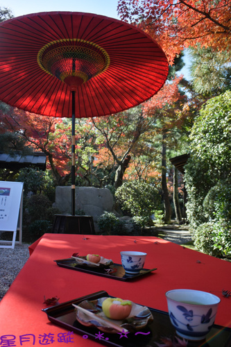 C1伝想茶屋  (3)