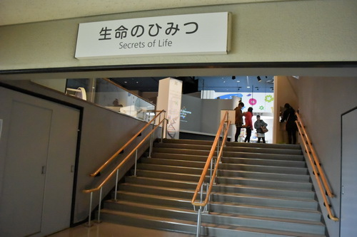 c名古屋市科学館   (2)