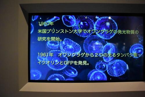 名古屋市科学館Ⅰ~2014秋
