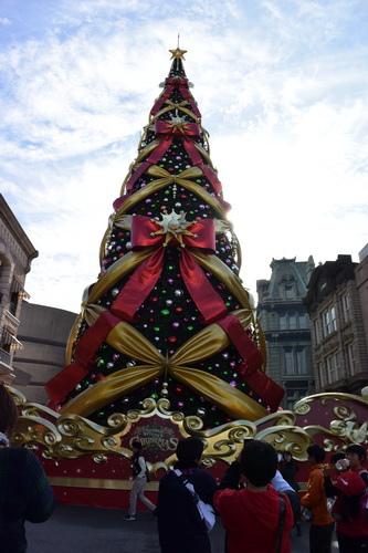 聖誕樹~2015