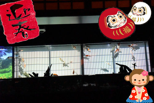 2016新春 ~京都・金魚の舞