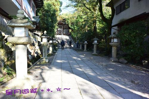 c2宇治神社 橋14