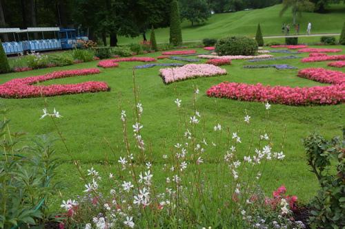 C夏宮花園 (11)
