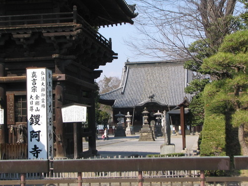 c06寺櫻16