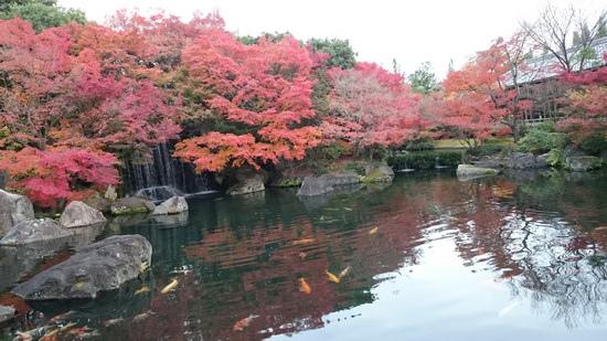 b姫路城 (2)