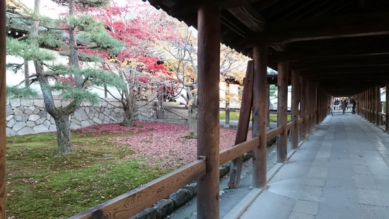 b姫路城 (6)