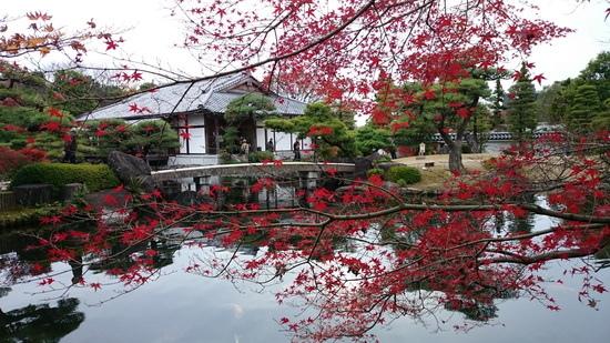 2015秋『京、阪、神』関西行~「姫路城 」
