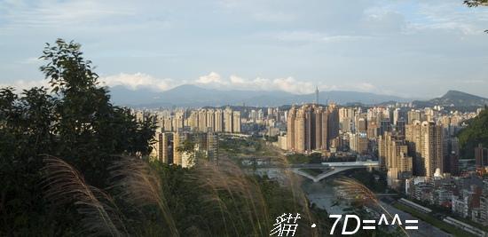 7D-08.jpg