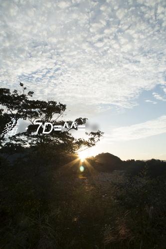 7D-09.jpg