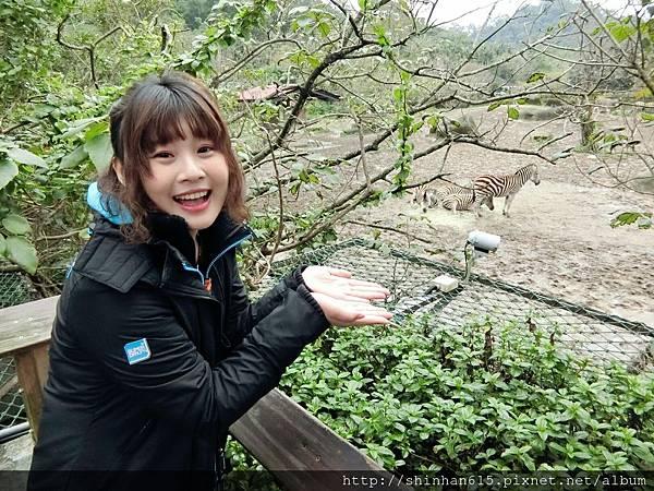 動物園穿搭_170301_0006.jpg