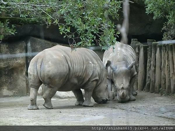 動物園穿搭_170301_0018.jpg
