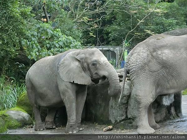 動物園穿搭_170301_0017.jpg