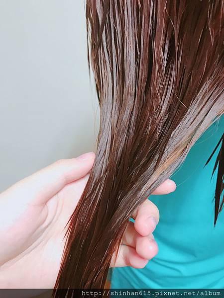 蕾珂詩洗髮精_170802_0015.jpg