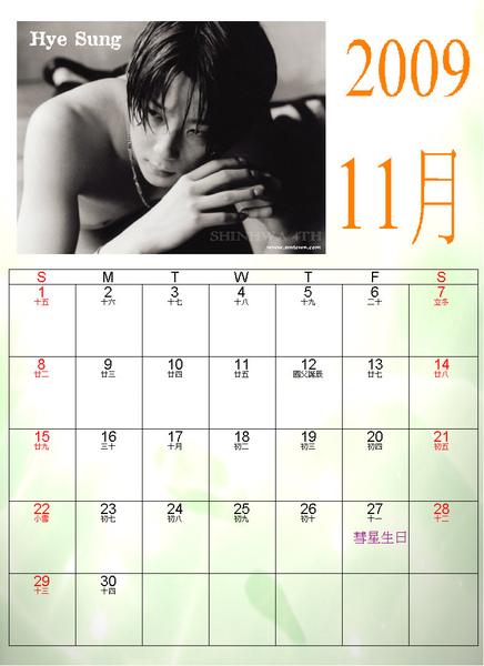 2009神話11月彗星生日.JPG