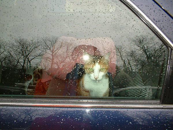 Mimi says goodbye to me (W05 spring bk)