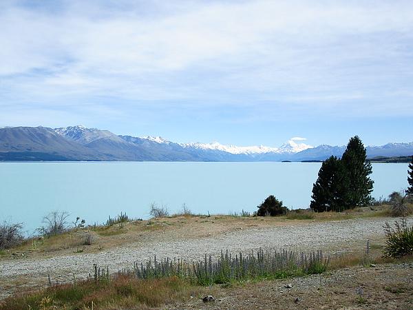 Lake Pukaki藍色牛奶湖