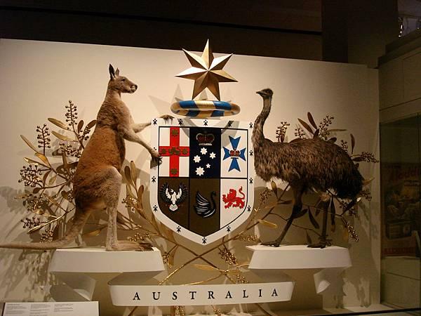 Inside Melbourne Museum