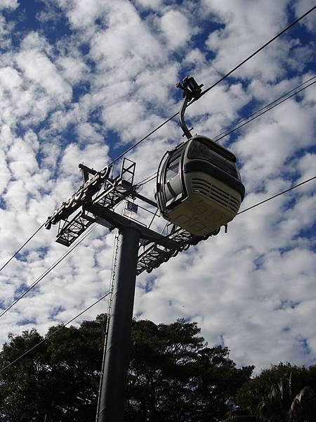 Toranga Zoo纜車