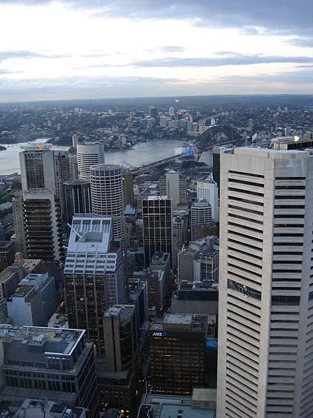 從Sydney Tower俯瞰市區