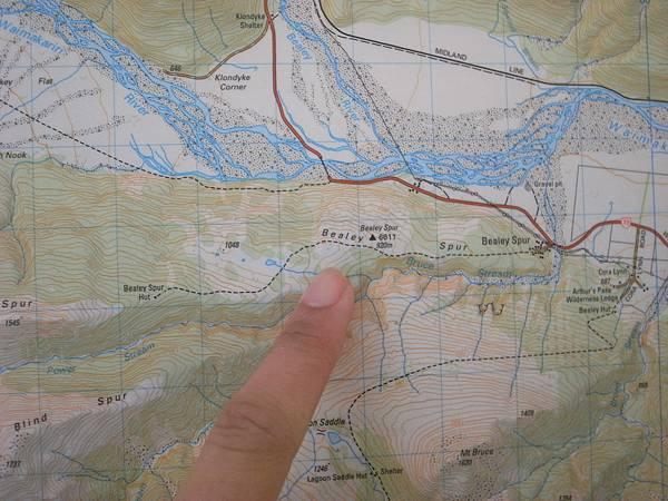 這就是我們走的Bealey Spur Track路線
