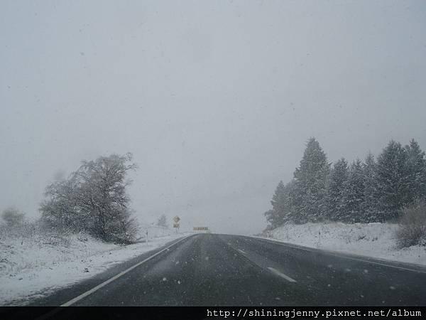 決定冒雪開車離開