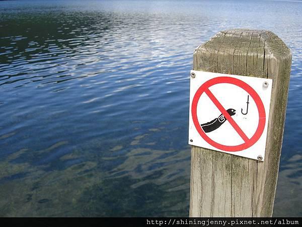 禁止釣鰻魚!