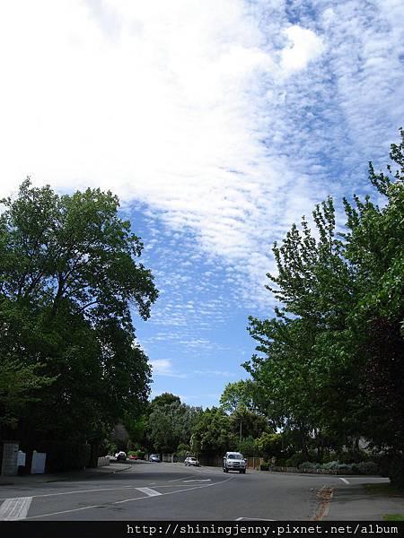 紐西蘭常見美麗的雲朵