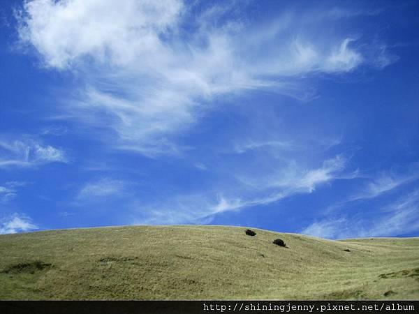 離開Blenheim,天空好藍