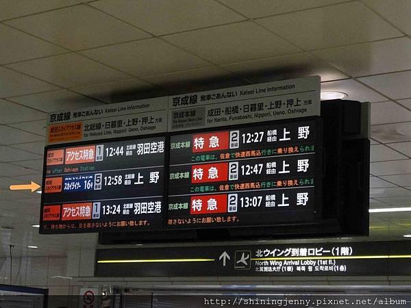 DSC00386_副本.jpg